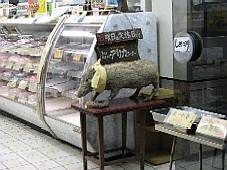 2008031115.JPG