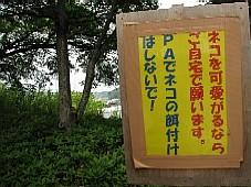 20080515104.JPG