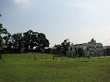 2008070117.JPG