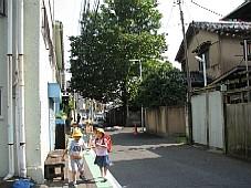 2008070118.JPG