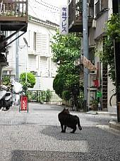 2008070302.JPG