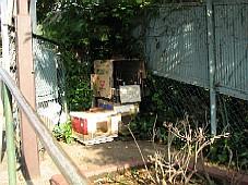 2008070321.JPG