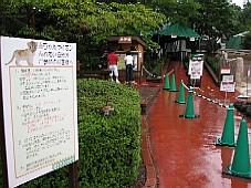 2008090808.JPG