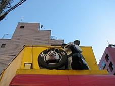 2008110507.JPG