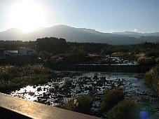 2008111107.JPG