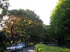 2008112109.JPG