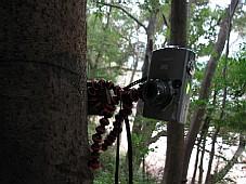2009020606.JPG