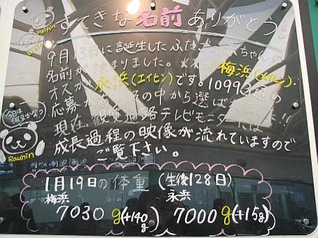 2009022016.JPG