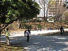 2009032603.JPG