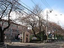 2009032606.JPG