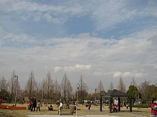 2009040911.JPG