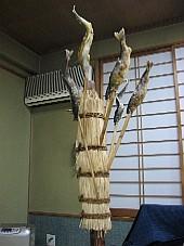 2009051911.JPG