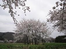 2009052717.JPG